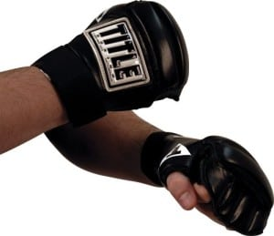 2 Title Boxing Speed Bag Gloves