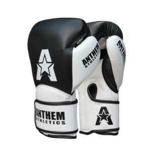 Anthem Athletics StormBringer Kickboxing Gloves