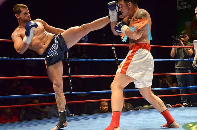 Best Muay Thai Gloves